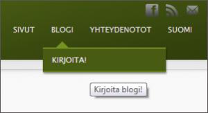 kirjoita_blogi